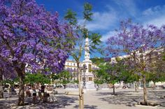Plaza de la Merced. Foto Milana Vosgien #city #photography #photo #image #travel #picture