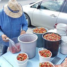 Car bonnet sale! The sweetest juiciest Georgian strawberries for sale at a fantastic price of 10 aed per kilo! This farmers car was literally packed with these sweet treats #tastegeorgia #local #organic #ccrgeorgia