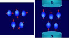 GENIO Italiano Giuseppe Cotellessa: Risonanza Magnetica Nucleare (NMR), come dialogano...