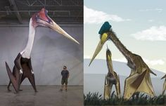 Many new species appeared on all continents and one of them was the giant Quetzalcoatlus that lived in North America. Large Spiders, Cool Science Facts, All Continents, Giant Animals, Scientific American, Animal Species, Worlds Largest, North America, National Parks