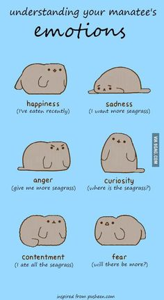 Emotions of a manatee