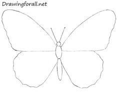 how to draw a butterfly with a pincil