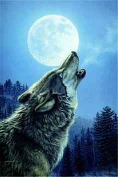 White Wolf: James Meger - Wildlife artist who paints with hidden images in his artwork