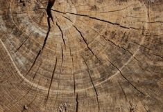 le bois est une texture vraiment bien de plus que chaque morceau de bois n'est jamais identique alors nous avons du choix a l'infinie