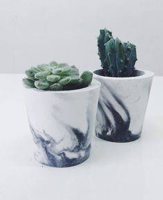 Small black marbled cement pots / planters for cactus, succulents or candles in . Small black marbled cement pots / planters for cactus, succulents or candles in . Cacti And Succulents, Potted Plants, Cactus Plants, Indoor Plants, Small Cactus, Succulent Pots, Small Plants, Cactus Farm, Edible Plants