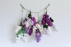 Drying hydrangea blooms