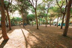 Pitch Camping Torre del Porticciolo, Alghero, Sardinia