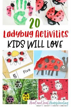 Fun list of ladybug crafts as well as educational activities for kids. Create a ladybug thematic unit study and have fun learning about ladybugs! Preschool Kindergarten, Preschool Learning, Fun Learning, Preschool Activities, Insect Activities, Educational Activities For Kids, Indoor Activities For Kids, Homeschool Blogs, Homeschool Coop