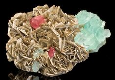 Tucson2014-159ApatiteAquamarineMica~Museum caliber plate featuring two reddish-pink Apatite crystals with an Aquamarine cluster! It's also large cabinet in size so it is a true centerpiece. The two Apatite crystals are the deepest hot pink you'll see in the marketplace. 99% of the specimens out there are pale but the color of these crystals literally jumps off the plate from between the Muscovite blades and demands your attention.