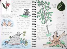 "Students are WILD about journaling after learning about naturalists in our activity ""Wild Words""! Learn more about how to attend a training to get a copy of the Project WILD K-12 curriculum & activity guide at www.projectwild.org"