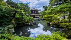 Find the best Japanese Zen Garden Wallpaper on GetWallpapers. We have background pictures for you! Garden Wallpaper, Full Hd Wallpaper, Nature Wallpaper, Wallpaper Wallpapers, Zen Background, Background Pictures, Ginkakuji, Japanese Nature, Manga Kawaii
