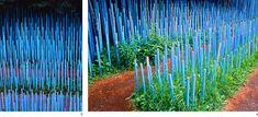 Blue Stick Garden - Claude Cormier