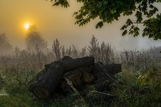 At dawn by Waldemar Sadłowski