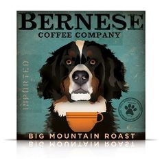 Bernese Mountain Dog Coffee Company giclee by geministudio on Etsy.