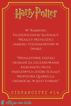 Bliźniacy Weasley i lord Voldemort  | Harry Potter - ciekawostki, zaskakujące fakty, odniesienia #HarryPotter #ciekawostki #fakty #książki