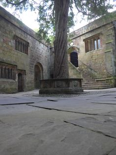 The Conduit courtyard and yew tree Medieval Castle, Wedding, Valentines Day Weddings, Hochzeit, Weddings, Mariage, Casamento, Wedding Ceremonies