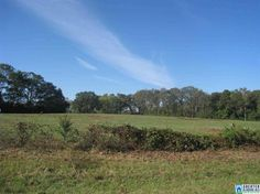 Magnificent location for residential development.  Beautiful rolling land with much road frontage on paved County Road 41
