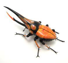 Glass beetle.