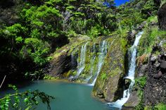Here Be Dragons, New Zealand, Waterfall, Track, River, Landscape, World, Places, Outdoor