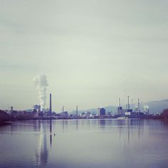 #skyline #linz #austria #voestalpine #voest #linzpictures #danube #industrieland #upperaustria #oberösterreich #wirtschaft #wildlife #citylife #nature #working #traunau #donau #riverdanube