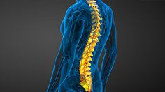Deload your spine, fix your posture, function better. Here's how.