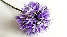 ABC TV | How To Make Allium Paper Flower From Crepe Paper - Craft Tutorial