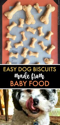 Easy Dog Food Biscuits made from Baby Food - these dog treats are fun and economical to make for you puppy from leftover baby food dogtreats puppy dogbiscuits babyfood easydogtreat healthytreat # Puppy Treats, Diy Dog Treats, Healthy Dog Treats, Dog Biscuit Recipes, Dog Treat Recipes, Baby Food Recipes, Sweet Potato Baby Food, Chicken Baby Food, Food Baby