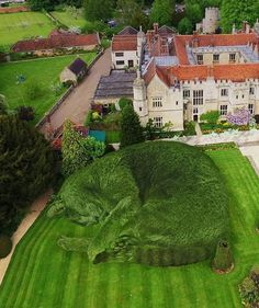 Artist Richard Saunders created amazing the topiary cat pictures for memorizing his beloved cat Tolly which was died in Feb, pics) Topiary Plants, Topiary Garden, Cat Garden, Garden Art, Richard Saunders, Giant Cat, Cat Life, Belle Photo, Beautiful Gardens
