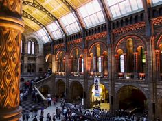 Check out this intricate ceiling design of Natural History Museum, London.  #InteriorDesign #HomeDecor  www.wsinteriors.in