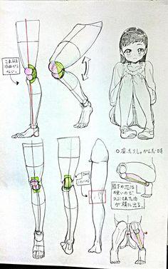 自分なりの膝関節の考え方。 正直ちゃんと膝の関節勉強したことないけど、大体こんなんだろと勝手にまとめました。