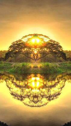 Double reflection in Paradise double Paradise reflection Nature Pictures, Cool Pictures, Beautiful Pictures, Fantasy Landscape, Landscape Photos, Sunset Photography, Landscape Photography, Amazing Photography, Natur Wallpaper