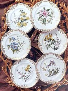 Spode Stafford Flowers
