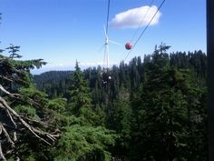 Grouse Mountain Ziplines in North Vancouver, BC