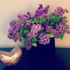 Jane's gorgeous lilacs..... www.seenandsaid.blogspot.com