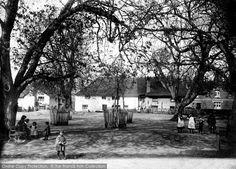 Otterton, The Village Green 1914. #village #characters #villagelife