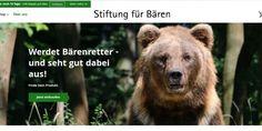 Weiterlesen: Werdet Bärenretter! Brown Bear, Animals, Black Forest, Hang In There, Animales, Animaux, Animal, Animais