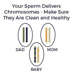 Fertility Boost For Man - Man Fertility Products Pack ! Fertility Products Physical Stress, Stress And Anxiety, Fertility Boosters, Increase Testosterone Levels, Male Infertility, Types Of Arthritis, Endocrine System, Forever Living Products, How To Increase Energy