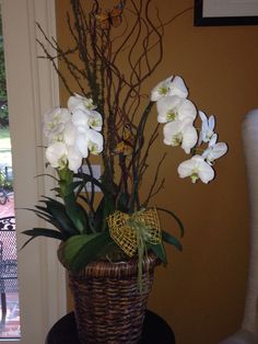 White drooping orchids in wicker wastebasket
