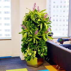 Florafelt Recirc Plant Tower for Trifacta San Francisco. Design: Michael Stephan, Rainforest Plants. http://PlantsOnWalls.com