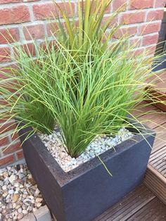Kunstpflanzen für den Hauseingang