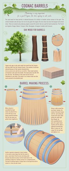 A series of infographics that explain exactly how cognac is made, aged and how it should be tasted for the best experience. Whisky, Bourbon Whiskey, Cognac Whiskey, Wine And Liquor, Wine And Beer, Best Cognac, Wine Education, In Vino Veritas, Wine Time