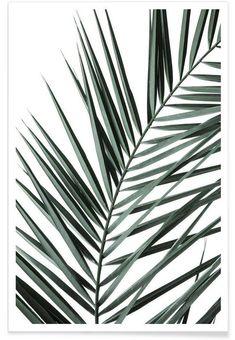 Phoenix als Premium Poster von clintonfriedman | JUNIQE