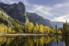 Cottonwood Fall Colors by David Laurence Sharp on 500px