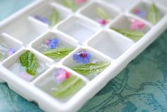 So pretty 50 ice in cubes inspiration for your wedding drink 17 - Beauty of Wedding Candy Flowers, Edible Flowers, Blue Flowers, Masala Chai, Flower Ice Cubes, Brunch, Ice Cube Trays, Ice Tray, Flower Food