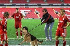 Piłkarz FC Barcelony stał się gryzącym psem • Luis Suarez owczarkiem niemieckim • Wejdź i zobacz zabawny obrazek Luisa Suareza >> #suarez #liverpool #football #soccer #sports #pilkanozna #funny