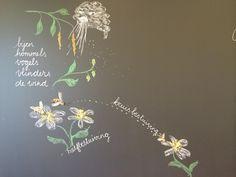 Periode Plantkunde. Van de bloemetjes en de bijtjes.