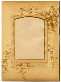 Vintage Ephemera Printable - Old Album Page with Birds - The ...