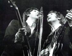 The Beatles Live, Che Guevara, Concert, Instruments, Concerts, Musical Instruments, Tools