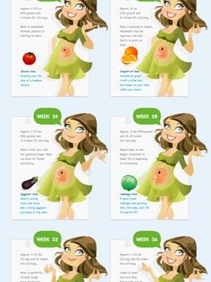 Pregnancy Week by Week Infographic