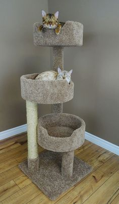 Our Premier Kitty Condo is a multi-level cat tower for your active kitties to play and relax. Our New Cat Condos Kitty Condo also comes with a durable sisal rope post. Cat Towers, Sisal Rope, Three Cats, Cat Condo, Scratching Post, Small Cat, Cat Furniture, Furniture Removal, Cats And Kittens